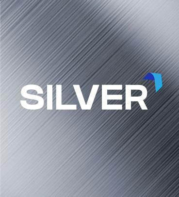 Mantenimiento Silver